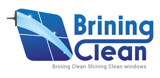 Brining Clean Logo Window Cleanng Service