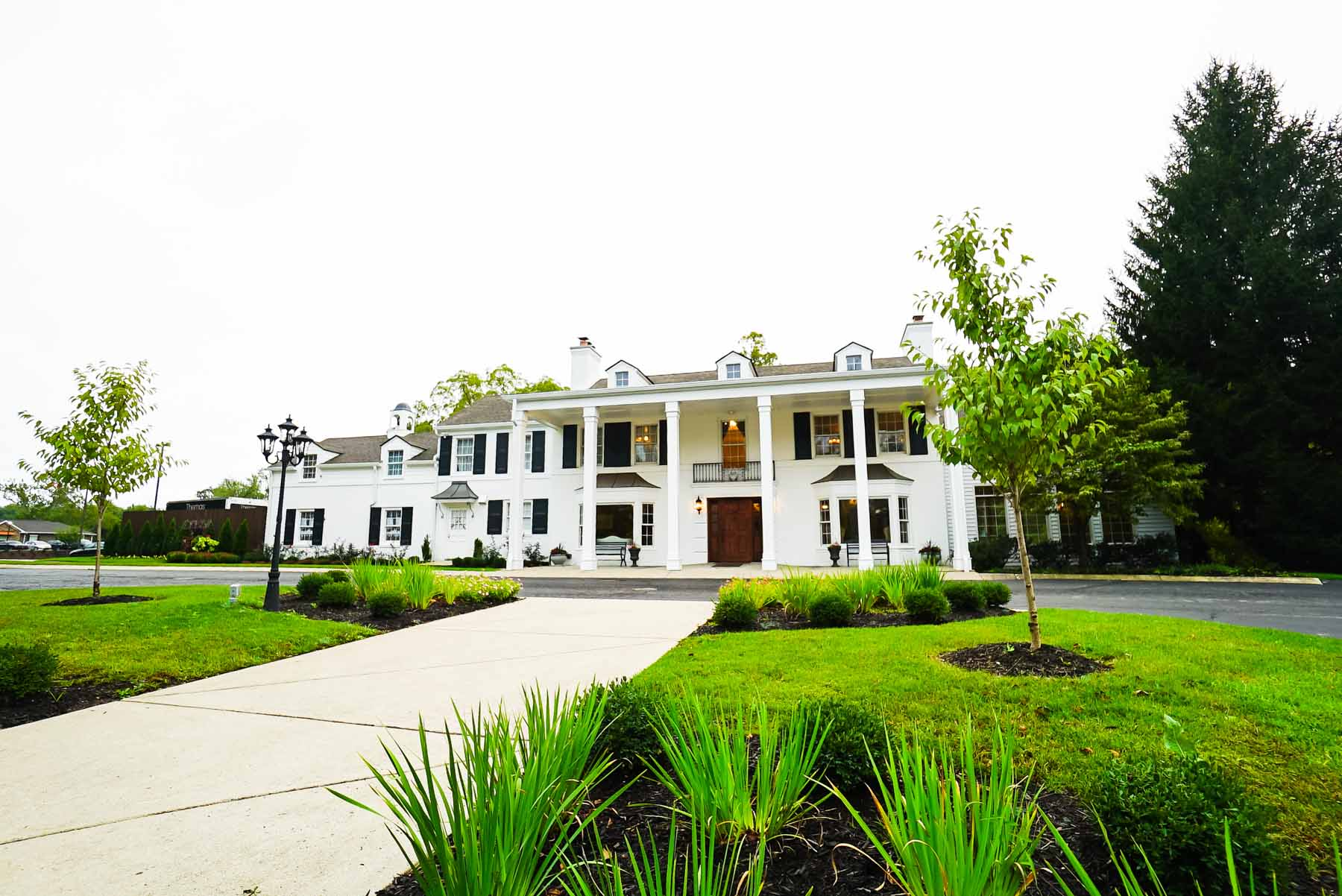 Black Iris Estate