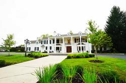 Black Iris Estate