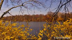 Lake Central Park