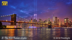 The 9/11 Tribute Lights