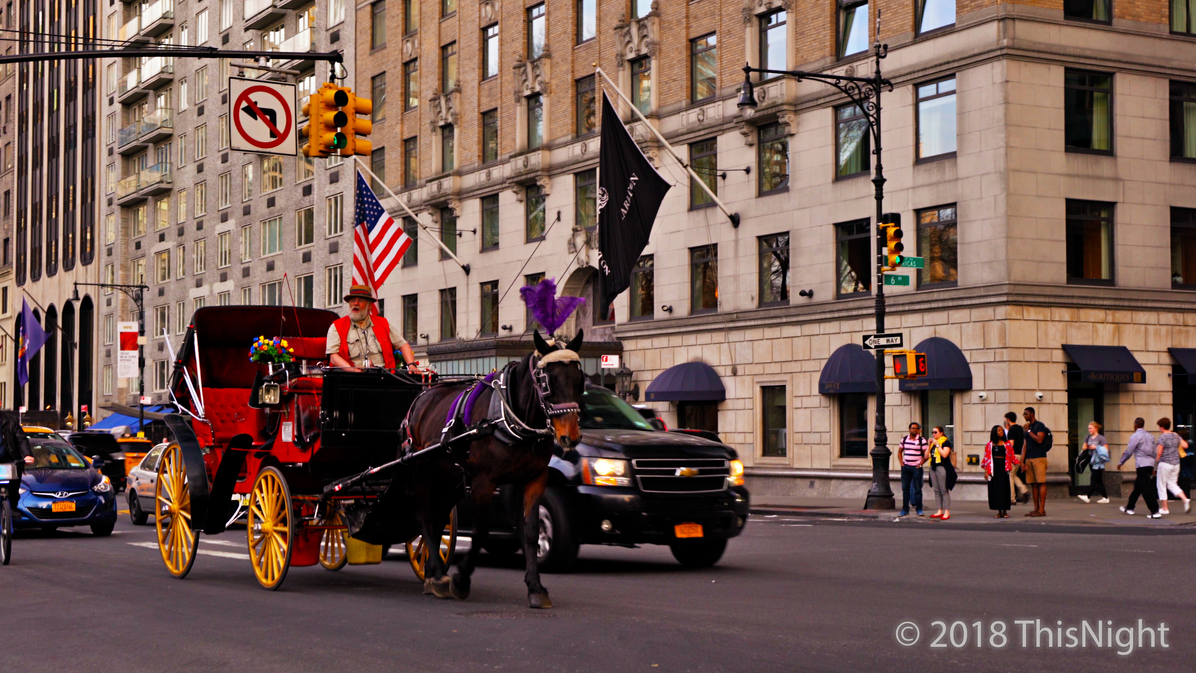 59 street.A horse-drawn carriage