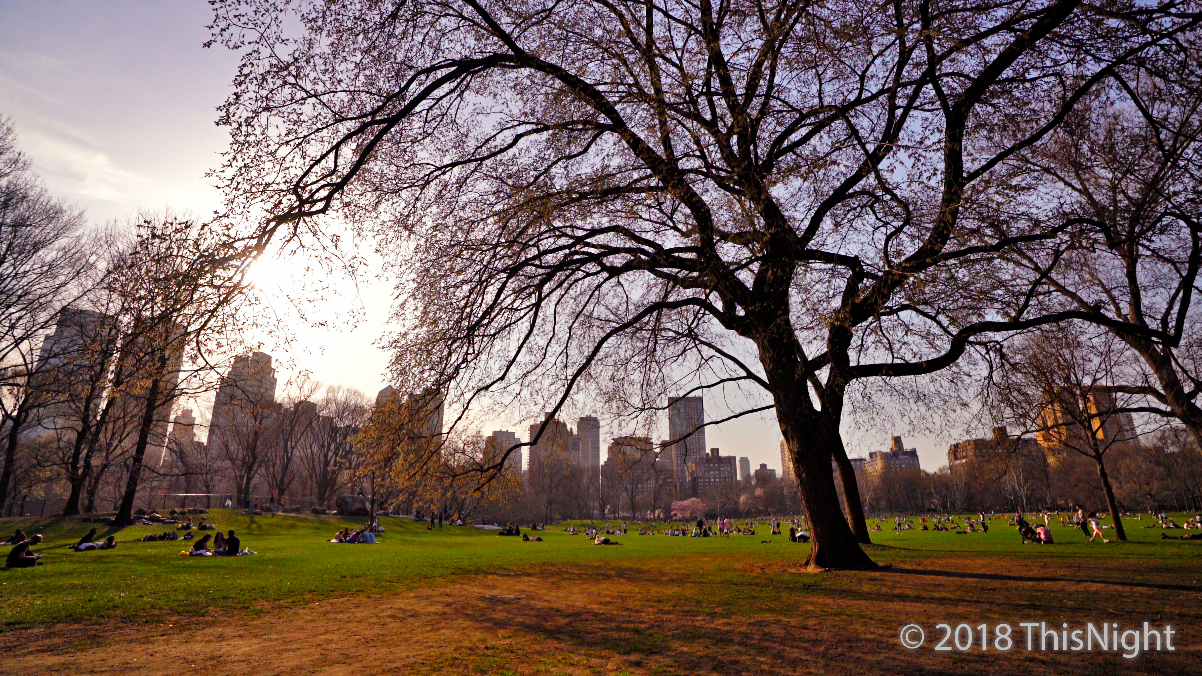 Sunset at Sheep Meadow