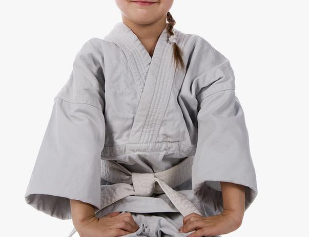 292-2929156_martial-arts-discipline-hd-png-download.png