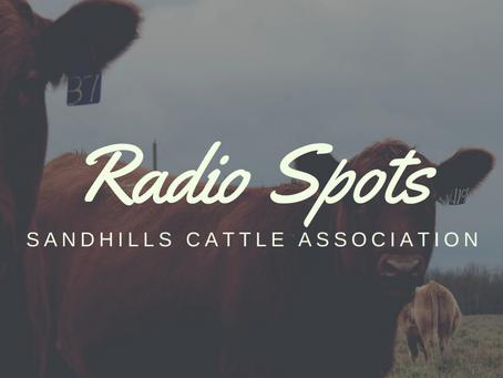 SCA Radio Spot on April 15, 2021