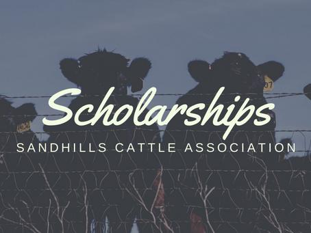 SCA Awards $9,000 in Scholarships