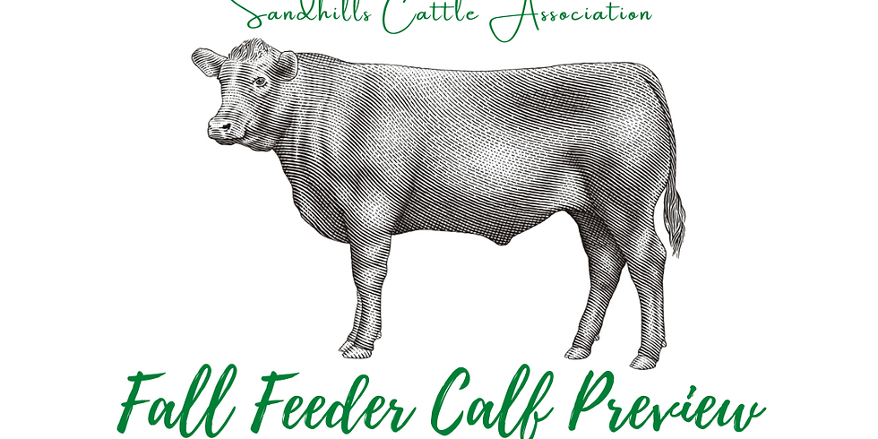 2nd Annual Fall Feeder Cattle Preview