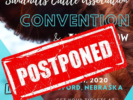 2020 SCA Convention Postponed