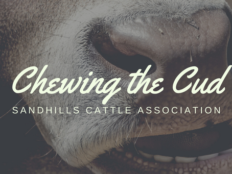 July 2021 - Chewing the Cud
