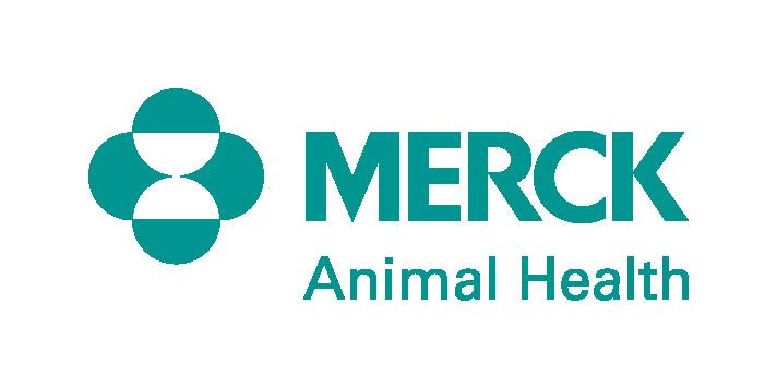 merck_ah_logo_teal_1cs_pos_PMS[2]