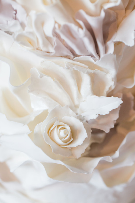 White Torn Paper Ruffles & Rose