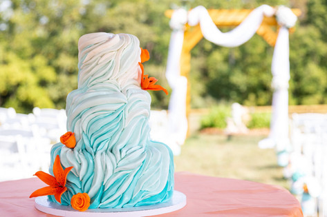 Ombre Crawling Waves Cake