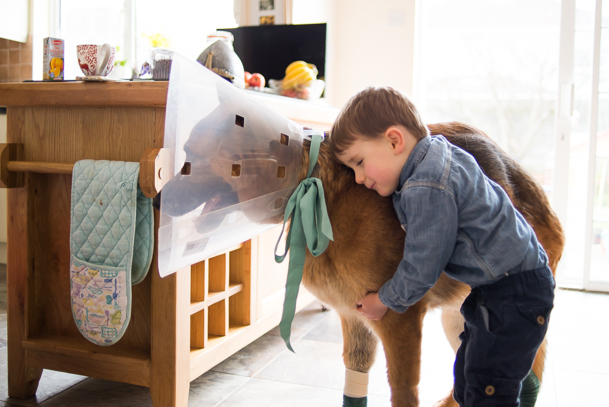 Little boy hugging his sick dog - Family photography session at home in Dublin by Camila Lee
