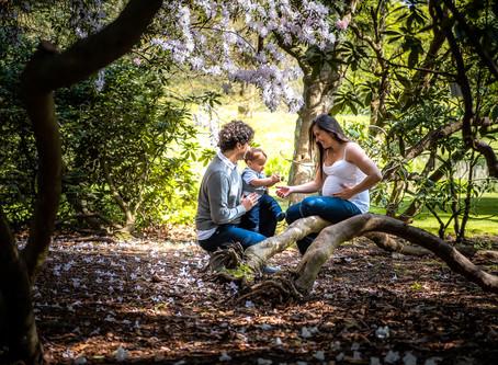 Maternity Photo Shoot at the Botanic Gardens in Dublin