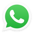 contact us on whatsapp