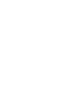 ico-COUNTRIES.png