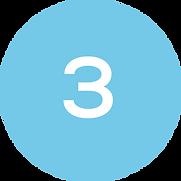 #3 circle.png