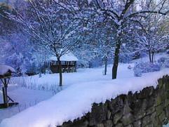 Pfauen-Voliere im Winter.jpg