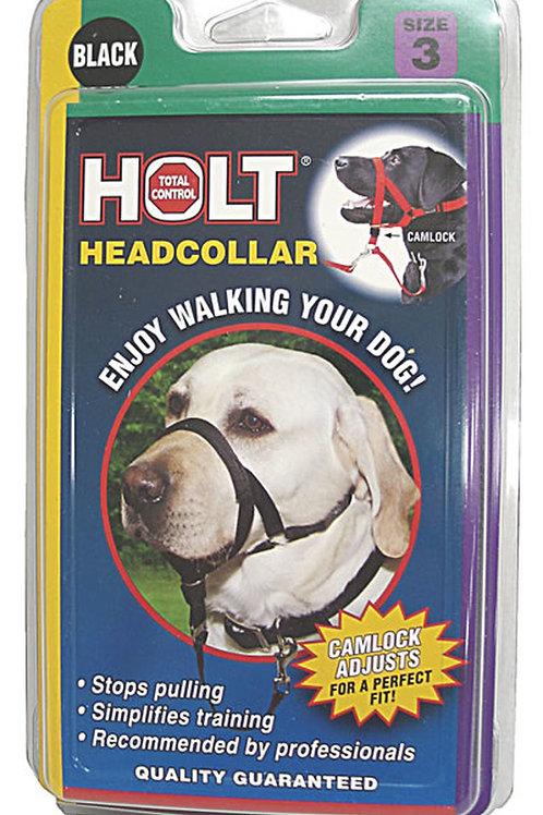 Coastal Holt Head Collar