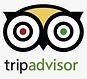 Pet friendly hotel in United Arab Emirates trip advisor reviews