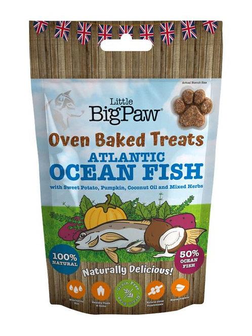 Little Big Paw Atlantic Ocean Fish Oven Baked Treat