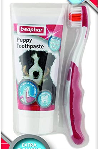 BeapharPuppy Dental Kit