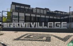 Grove Village