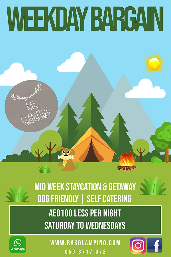 Copy of Camping Poster.jpg