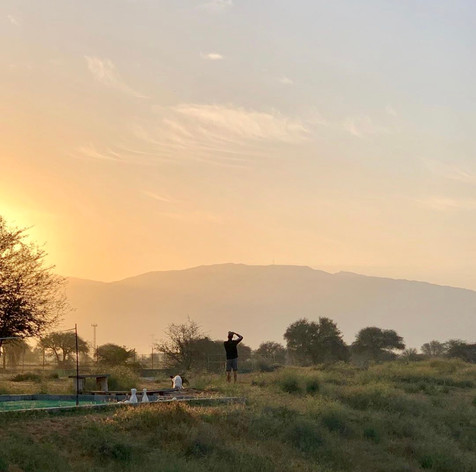Beautiful Sunrise - Get up early and see the sunrise above the Hajjar Mountains.  A stunning time of the day as the birds wake up, the sky slowly illuminates with the rising sun.  The best dog walking time to explore the 9 secure acres.