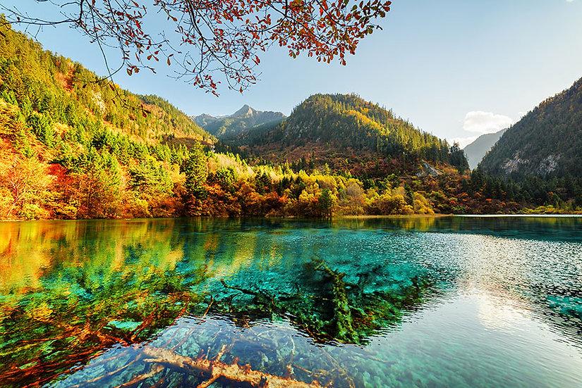 Duvar Kağıtları Göl Manzara | 3 Boyutlu Duvar Kağıtları Sonbahar Orman