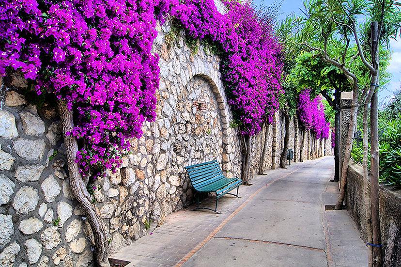 3d Duvar Kağıdı   Mor Çiçek Parkı Manzara Duvar Kağıtları   Duvar34.com