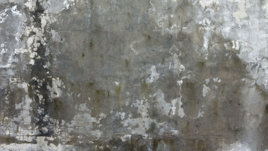 Taş Beton Desen Duvar Kaplamaları | 3 Boyutlu Beton Duvar Kağıdı