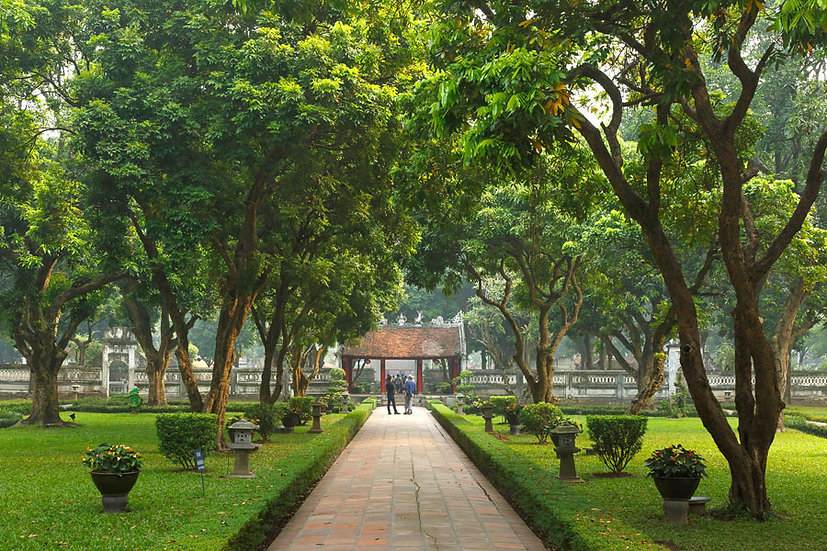 Park Manzara Duvar Kağıtları | 3 Boyutlu Botanik Parkı Duvar Kağıtları