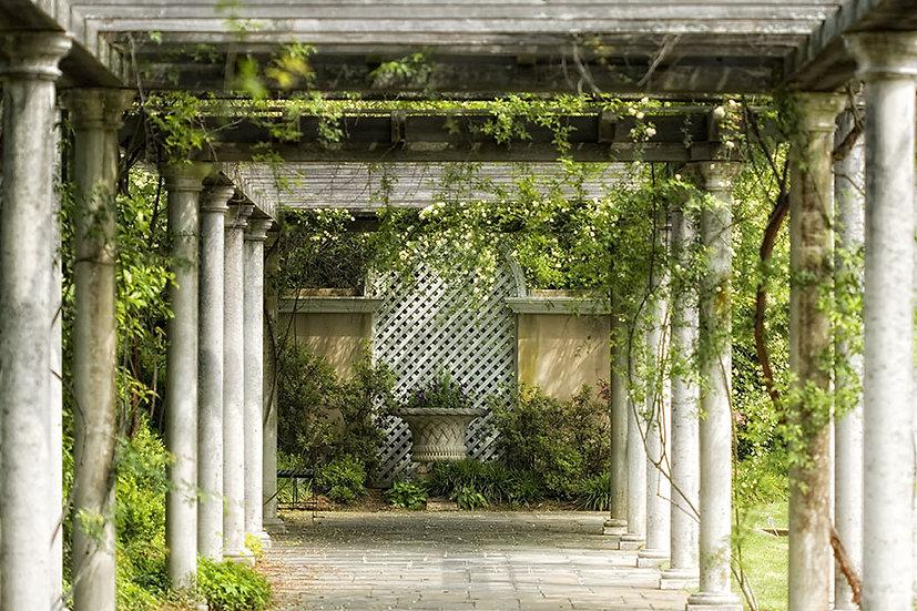 Duvar Kağıtları 3d Modelleri | Botanik Bahçe Manzaralı Duvar Modelleri | Aksaray