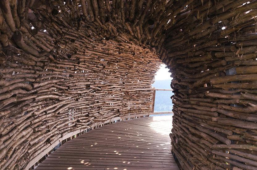 Ahşap Tünel Manzara Duvar Kağıtları | 3 Boyutlu Odun Duvar Kağıdı | Fransa