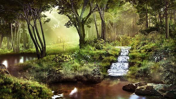 Orman Modelleri ve Fiyatları   3D Duvar Kağıtları   Şelale Duvar Kağıtları