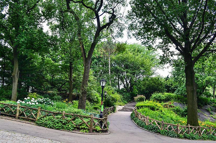 3d Boğaziçi Botanik Bahçesi Duvar Kağıdı Paneli | 3d Duvar Kağıtları Van