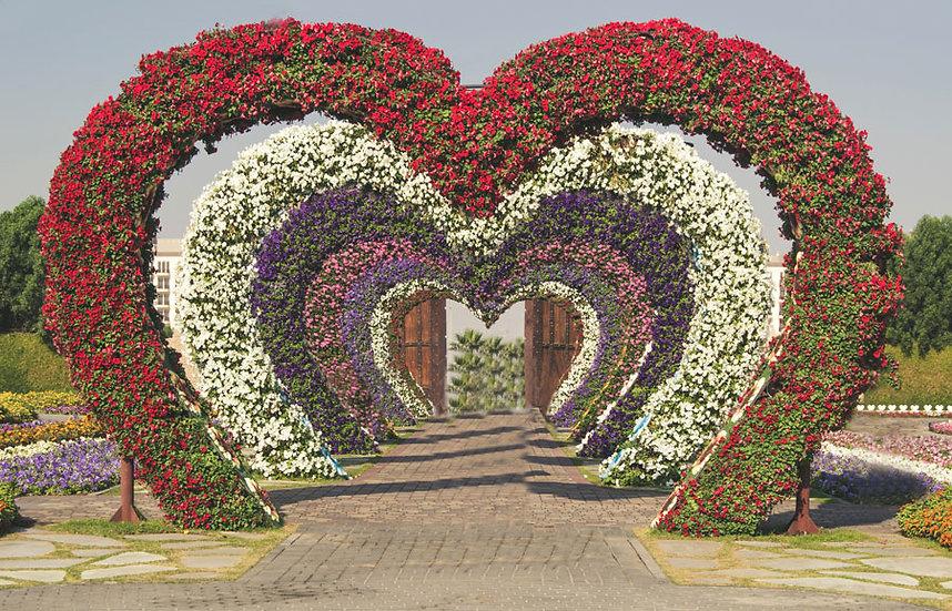 Kalpli Botanik Duvar Kağıtları   3 Boyutlu Kalpli Duvar Kağıdı   Dubai