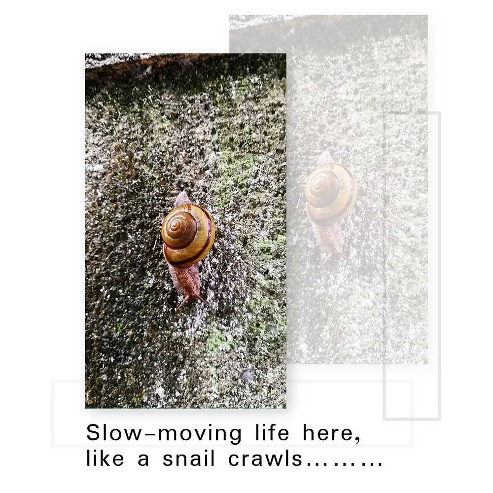 Slow-moving life here, like a snail crawls......