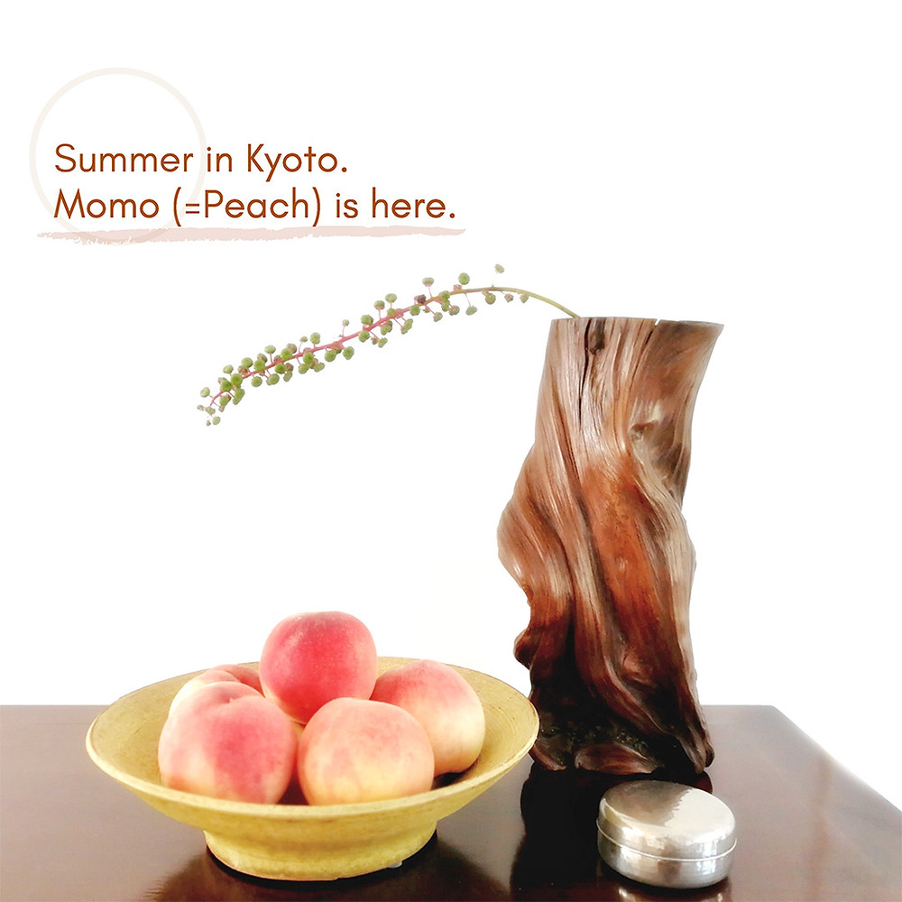 Summer in Kyoto. Momo (Peach) is here