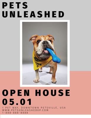 Pet Shop Flyer.jpg