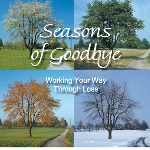 Seasons of Goodbye: Working Your Way Through Loss by Chris Ann Waters