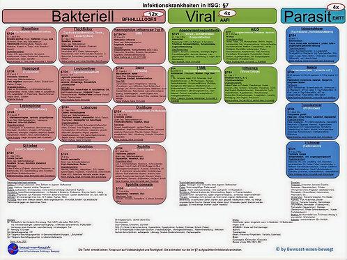 Infektionskrankheiten §7, Übersicht