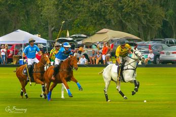 Polo Game - Lakewood Ranch Polo Club