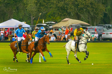 Polo Game - Lakewood Ranch Polo Club