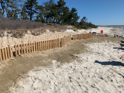 Completed Snow Fence