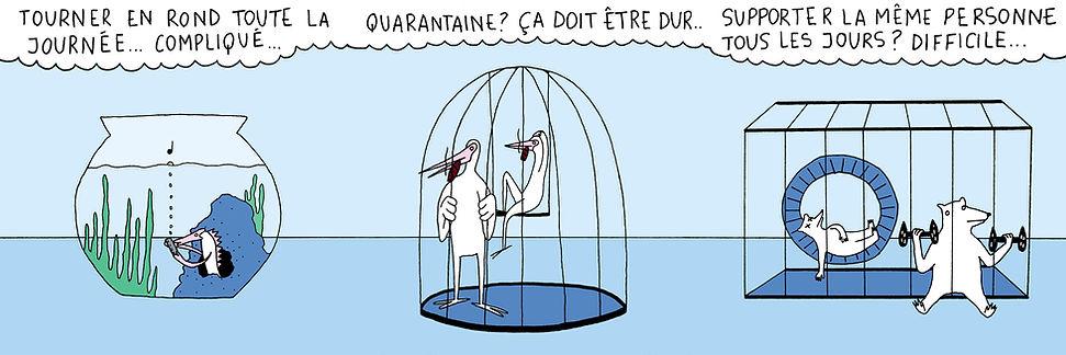 quarantaie.jpg