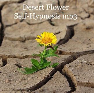 Desert Flower mp3.jpg