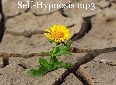 Desert Flower Self-Hypnosis mp3