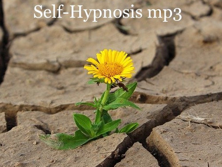 Desert Flower Self-Hypnosis mp3